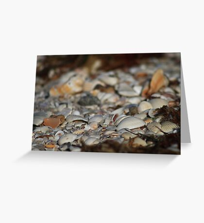 Sea Of Shells Greeting Card