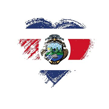 Grungy I Love Costa Rica Heart Flag by madra