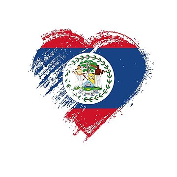 Grungy I Love Belize Heart Flag by madra