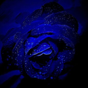 gxp blue rose flower vector art by gxp-design