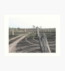 Magnetic Termite Mounds Art Print
