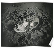 Sand Cradle Poster