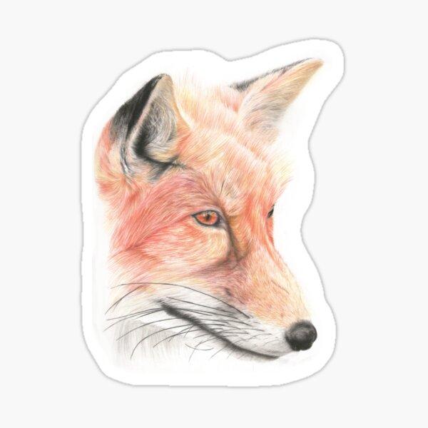 Fox Pencil Art Sticker