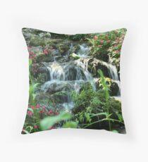 Rainbow Springs Throw Pillow