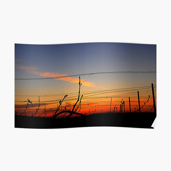 Sunset in Chouilly. Poster
