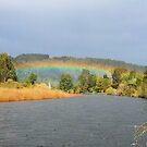 101018 rainbow by pcfyi