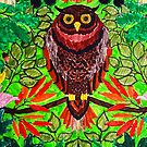 Owl by my son by SharonButler