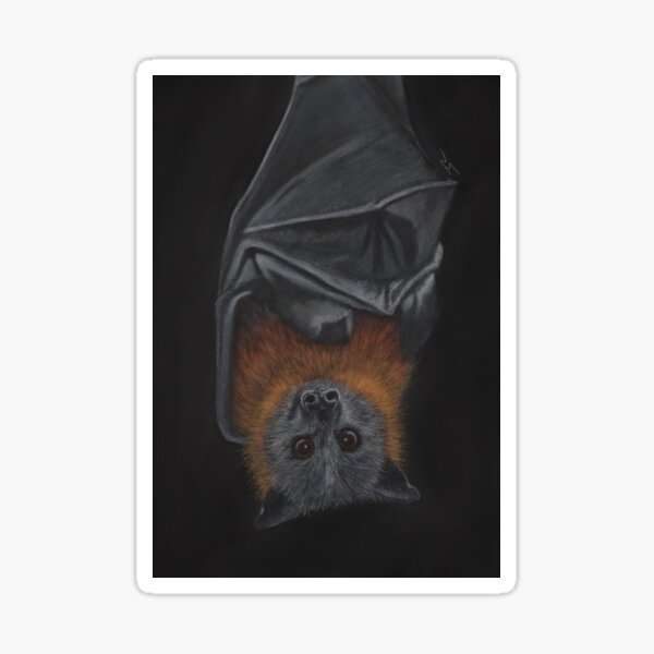 """Siegfried"" the Grey-Headed Flying Fox Sticker"
