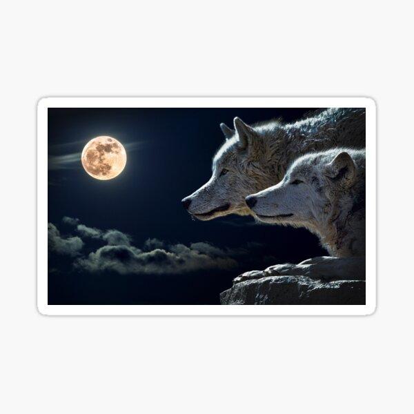 Wolf Dreams Sticker