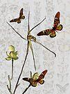 Butterflies & Orchids 1 by Leonie Mac Lean