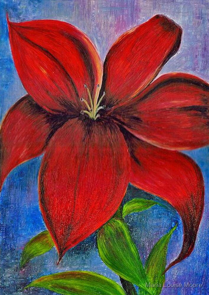 Lily by Maria Louise Moore