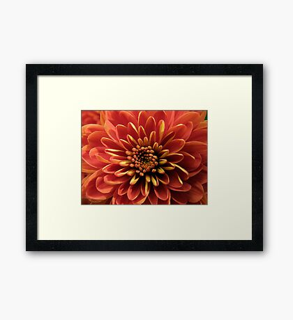 Chrys Ann - The Mum Framed Print