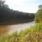 Beautiful River  by Robin Harrison