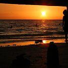 Sunset Sonata (please view large) by SERENA Boedewig