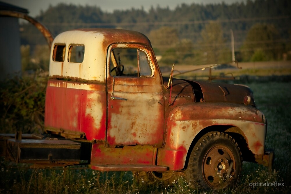 Out to Pasture by opticalreflex