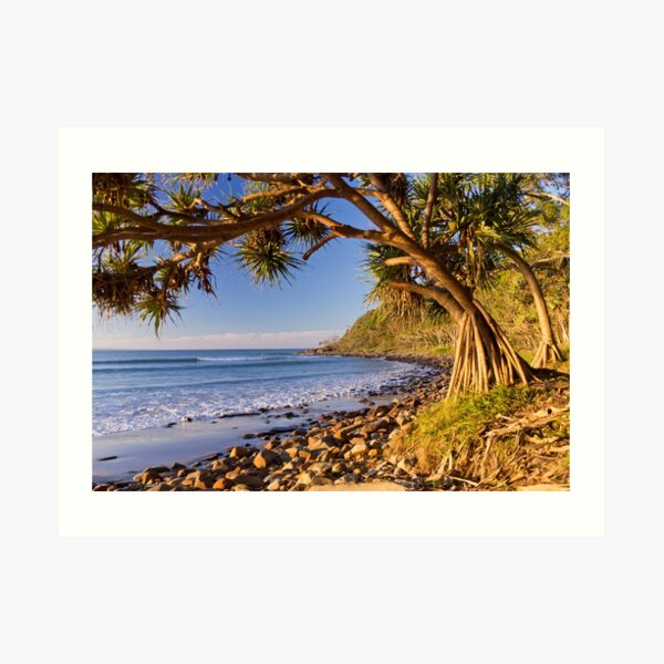 Noosa National Park, Queensland Art Print