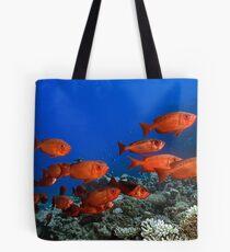 Bigeyes Tote Bag