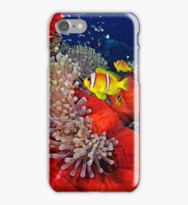 Anemone City iPhone Case/Skin
