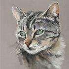 Sweet, beautiful cat by AtelierLinty