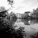 Back In Time - An English Scene In Black And White by mcworldent
