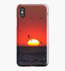 Sunset & Birds iPhone Case/Skin