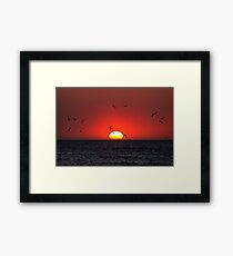 Sunset & Birds Framed Print