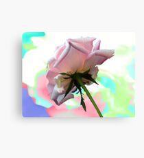 Rosie Colors Canvas Print