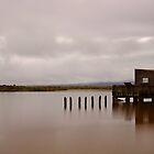 Okarito Lagoon.....West Coast of New Zealand.....South Island by Imi Koetz
