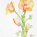 Bunch of California Poppies by CheyAnne Sexton by CheyAnne Sexton