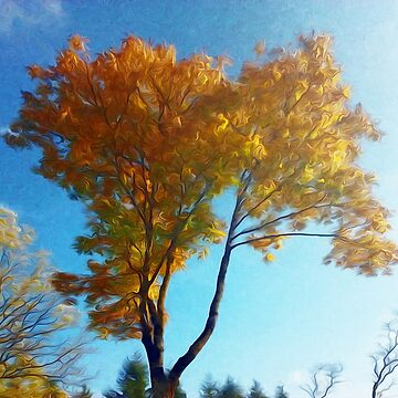 Autumn's tree 03 11 1018 by algirdasdesign