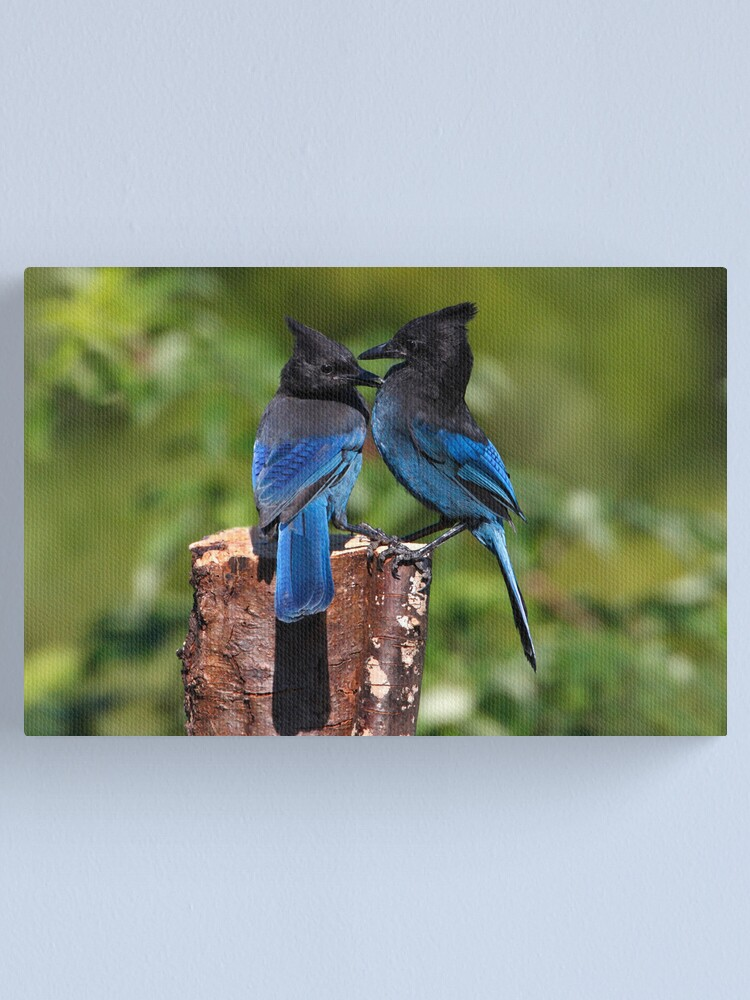 Alternate view of Jay Peck Canvas Print