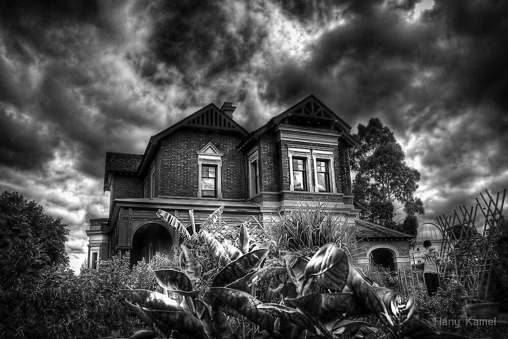 Black and White Vision of the House  by Hany  Kamel