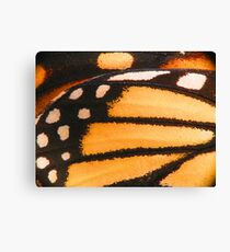 Monarch Butterfly Wing Macro Canvas Print