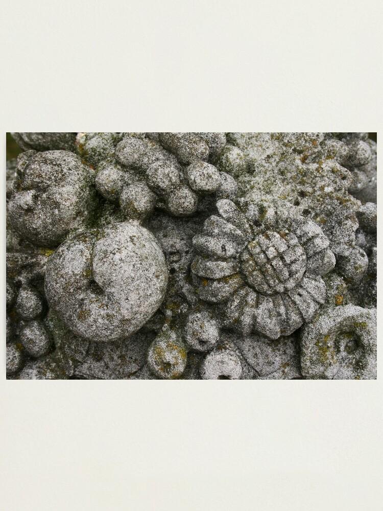 Alternate view of Stone Photographic Print