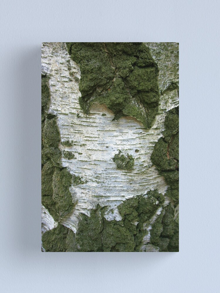 Alternate view of Tree Bark... Canvas Print
