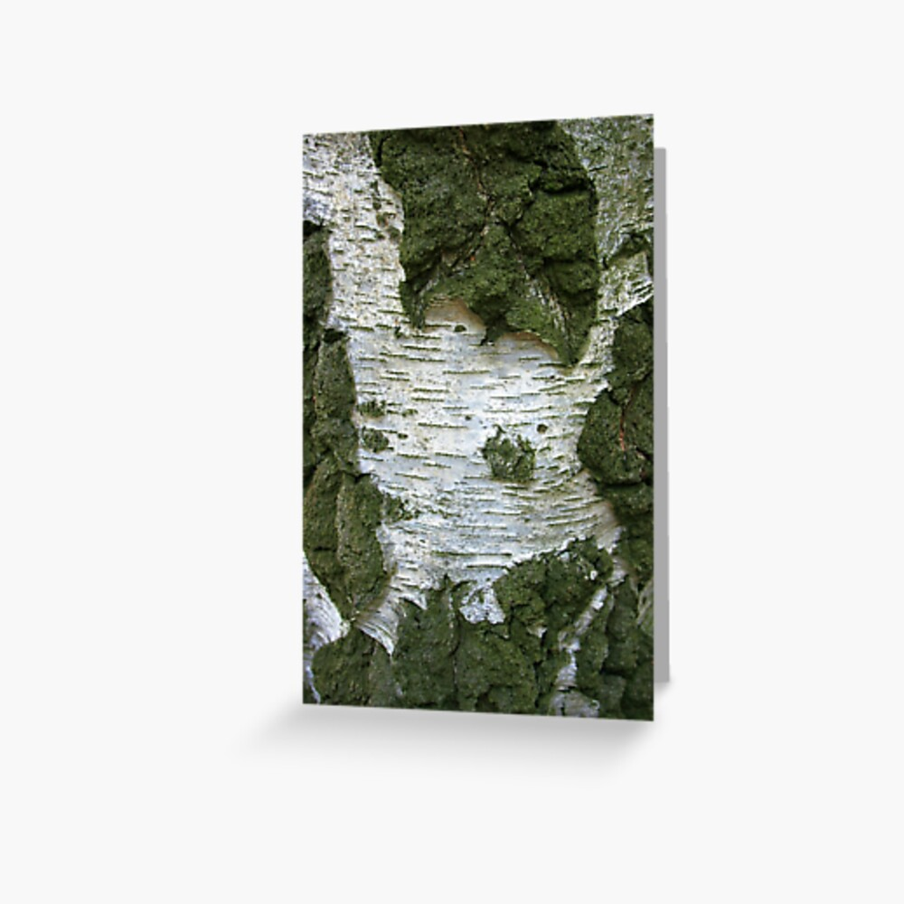 Tree Bark... Greeting Card