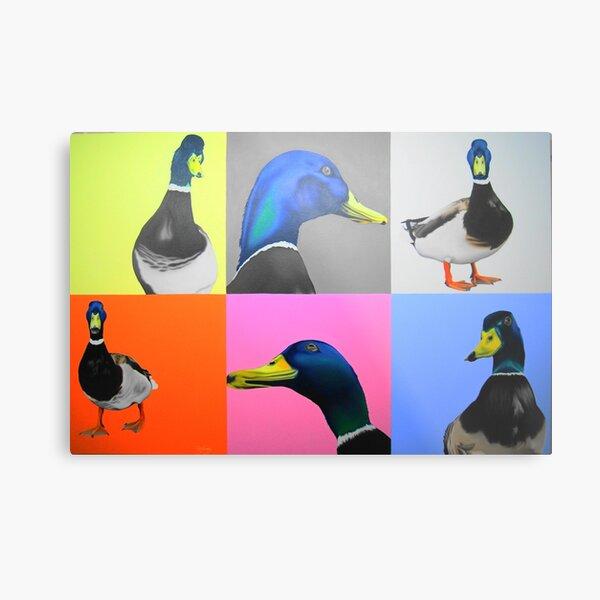 Reservoir Ducks. Metal Print