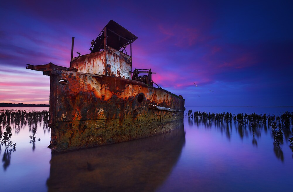 Reclamation by Mark Shean