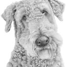 Airedale terrier by doggyshop