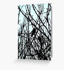 Blackbirds Greeting Card