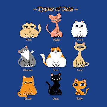 Types of Cats by tobiasfonseca