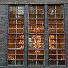 Window With A Chandelier by Alexandra Lavizzari