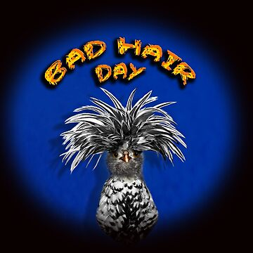 Bad Hair Day by johnny55