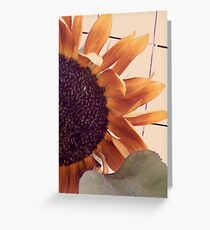 sunflame Greeting Card