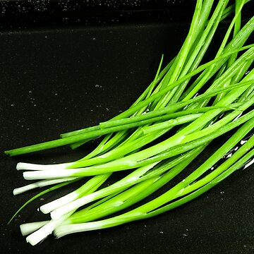 Green leek in the sink for washing on a dark background for cooking with free space by vladromensky