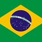 Show off your colors - Brazil flag by twgcrazy