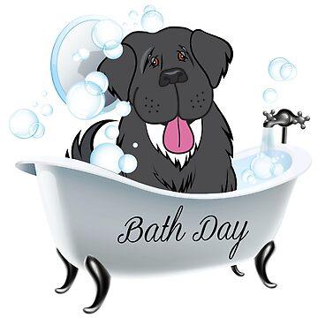 Newfoundland Dog Bath Day! by itsmechris