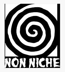 Non Niche Photographic Print