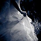 Wedding Dress by Christine Wilson
