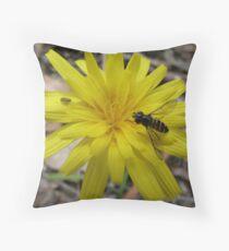 Welcome Aboard! - Launaea angustifolia (Arabian launea) Throw Pillow